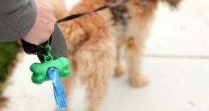 Top 50 Best Dog Poop Bags