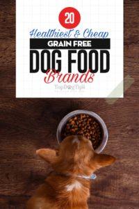 Top Best Cheap Grain Free Dog Food Brands
