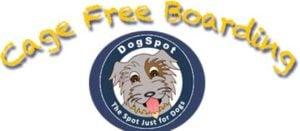 DogSpot Dog Boarding San Diego