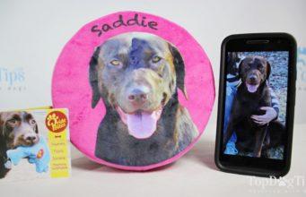 PrideBites Custom Frisbee Toy Review