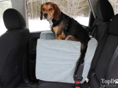 Snoozer Luxury Lookout Dog Car Seat Review