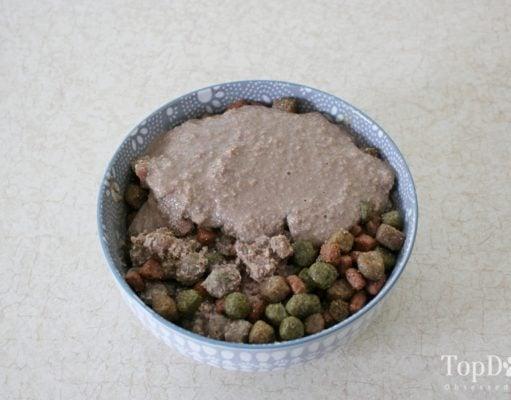 Homemade Dog Food Gravy Recipe