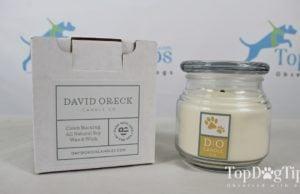 David Oreck Pet Odor Eliminating Candle
