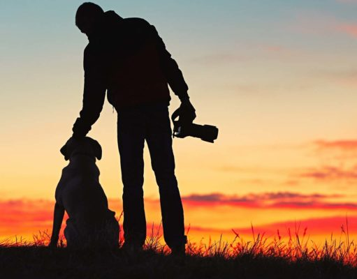Dog Photography - The Ultimate Guide and Best Tips for Beginners