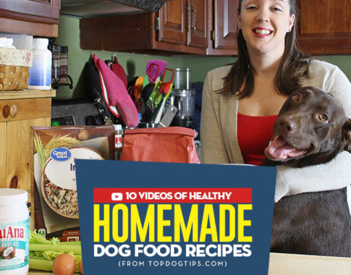 Most Popular Homemade Dog Food Recipe Videos