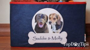 PrideBites Personalized Dog Toy Box