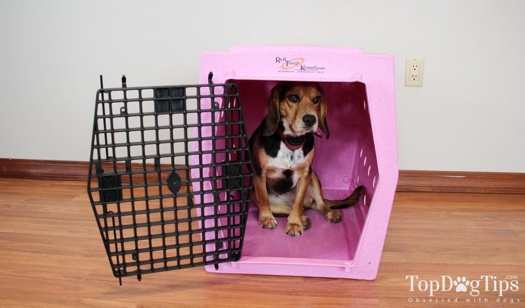 Ruff Tough Kennel Reviews >> Ruff Tough Kennels Intermediate Single Door Kennel Review (2018)