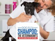 The Veterinarians Guide on Dog Flea Shampoos