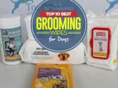 Top 10 Best Dog Wipes