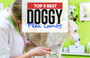 Top 5 Best Dog Flea Combs for Every Coat Type