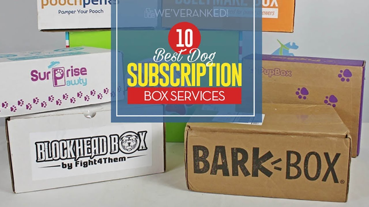 The 10 Best Dog Subscription Box Choices of 2018 f64a005a1