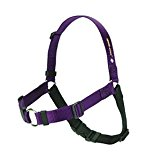 SENSE-ation No-Pull Dog Training Harness
