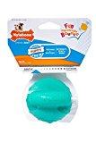 Nylabone Puppy Chew Toy Bouncy Ball