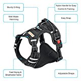 Big Dog No Pull Easy Control Harness