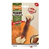 Nylabone Dura Chew Femur Bone Alternative Flavored Dog Chew Toy