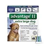 Bayer Advantage II Topical Flea Treatment Dogs