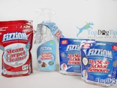 Fizzion Pet Stain & Odor Remover