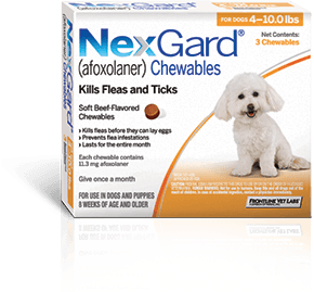NexGard Flea Pills for Dogs
