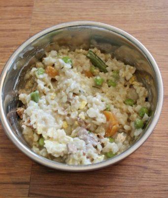 Elimination Diet Recipe Dog Food