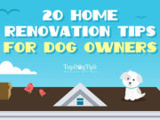 Home Renovation Tips for Dog Owners