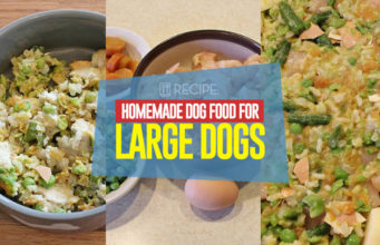 Recipe - Homemade Dog Food for Large Dogs