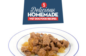 Homemade Dry Dog Food Recipes For Large Dogs