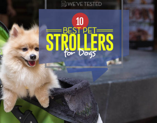 Top 10 Best Dog Strollers in 2018