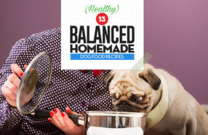 Top 13 Balanced Homemade Dog Food Recipes