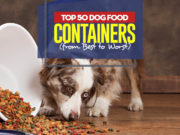 Top 50 Best Dog Food Container