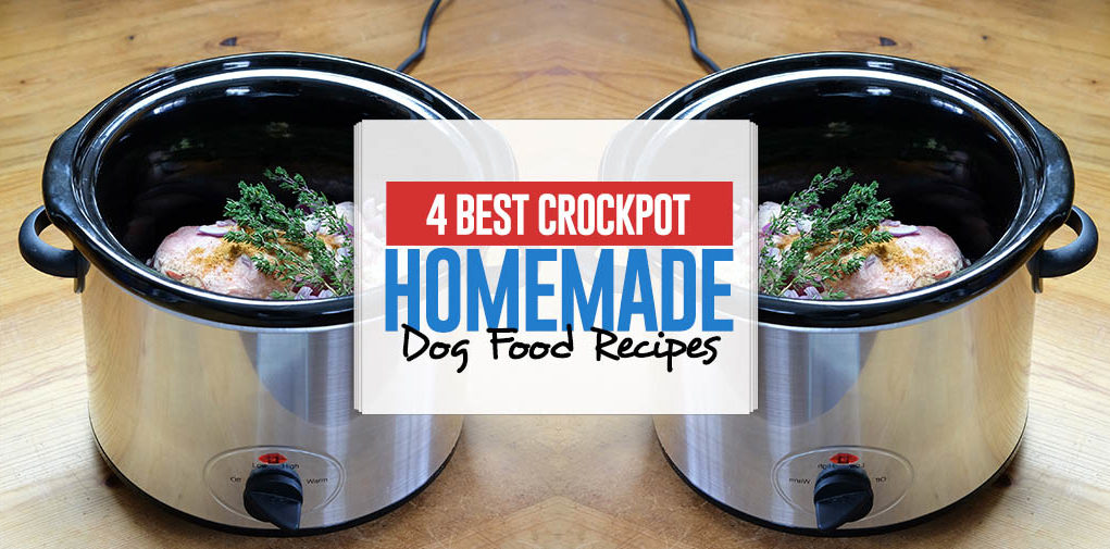 The Best Homemade Crockpot Dog Food Recipes
