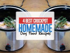 The Best Homemade Crockpot Dog Food Recipes