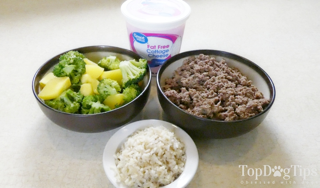 Homemade Dog Food for Pancreatitis