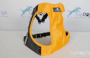 Sleepypod Clickit Terrain Dog Harness
