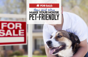 Top 15 Ways to Make Your House Pet-Friendly Before Selling