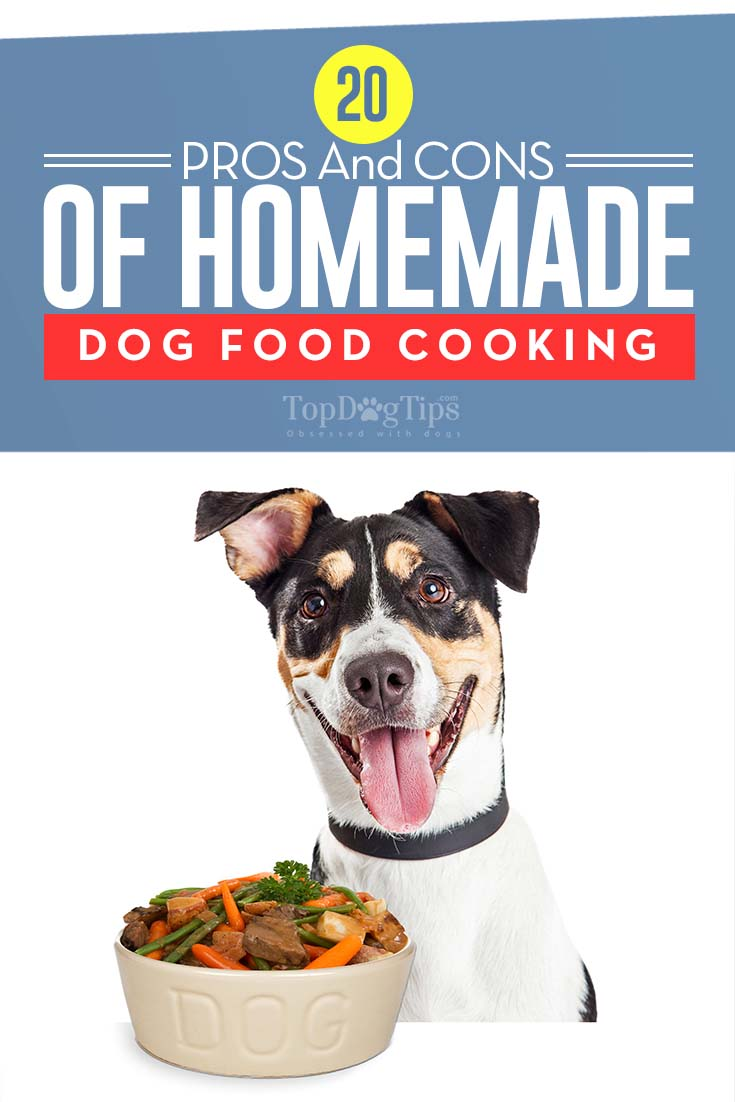 20 Homade Dog Food Recipes 20 pros and cons of homemade dog food recipes (and some myths)