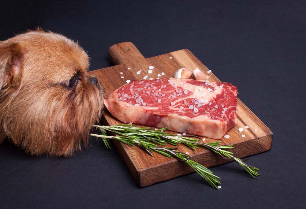 Eat a good steak