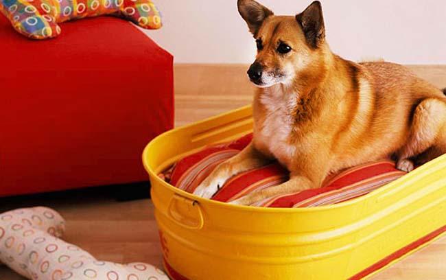 Old Baby Bathtub as DIY Dog Bed