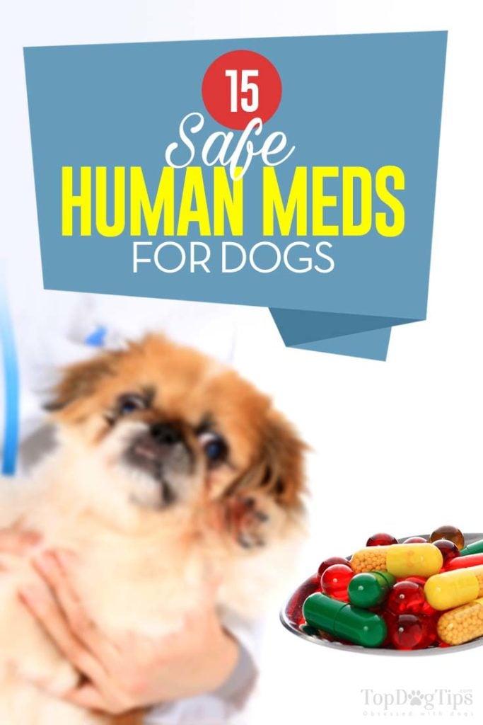 The 15 Safe Human Meds for Dogs