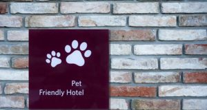 8 Most Dog Friendly Hotels and Hotel Chains in the U.S.