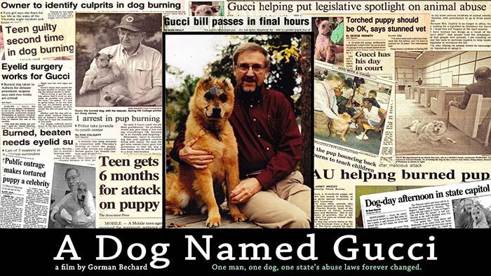 A Dog Named Gucci dog documentary