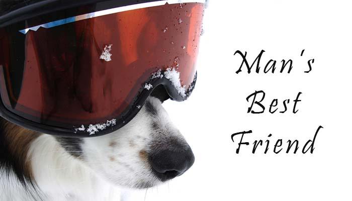 Mans Best Friend dog documentary