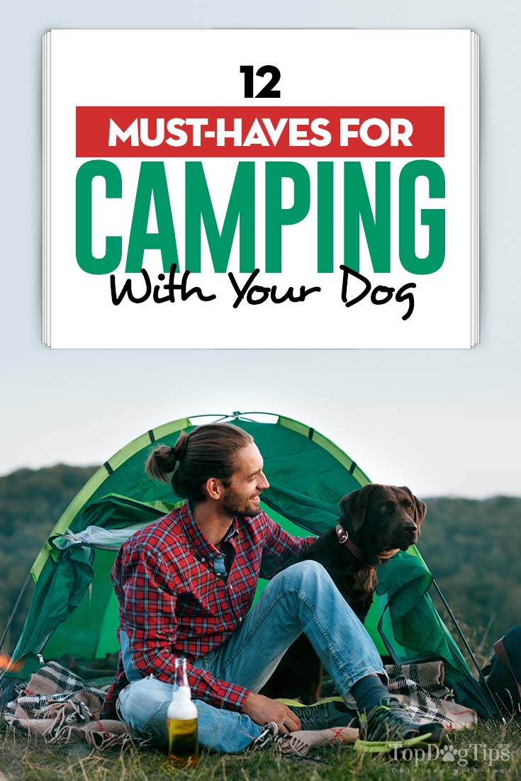 12 Must-Haves for Camping With Your Dog