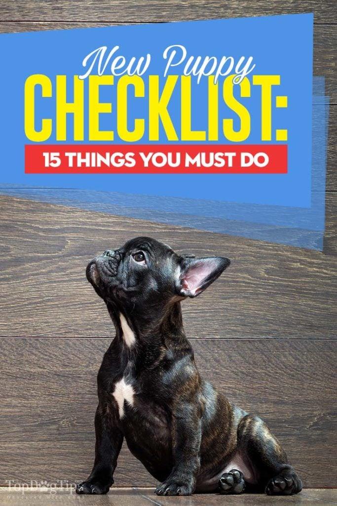 Detailed New Puppy Owner Checklist