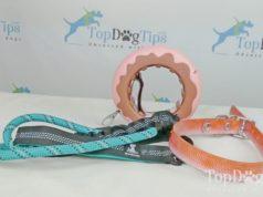 Dog Walking Supplies Giveaway