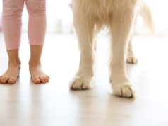 Kids Who Grow Up With Dogs Have Lower Asthma Risks