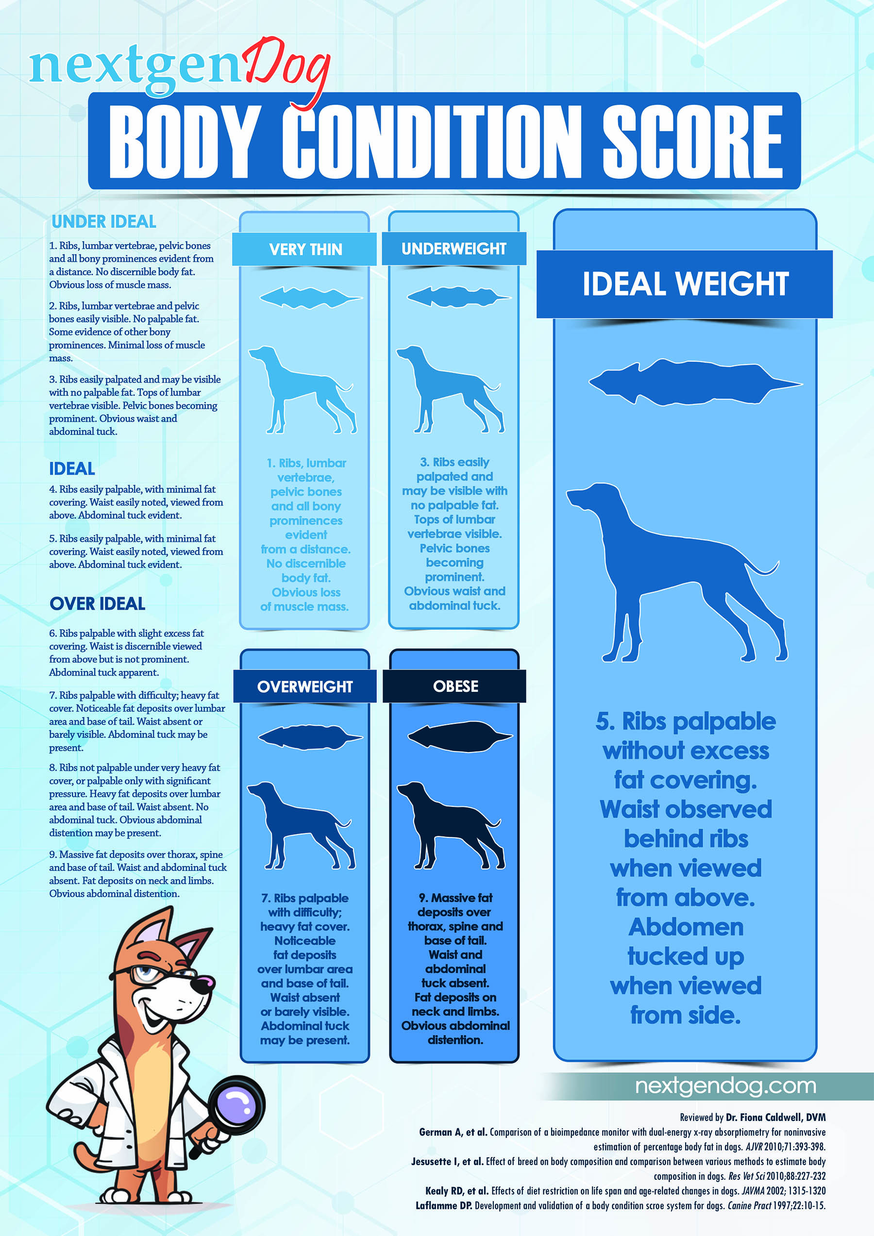 Dog Body Condition Score Chart (BCS)