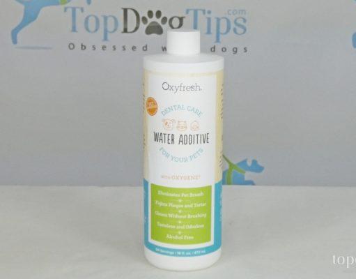OxyFresh Dental Care Solution
