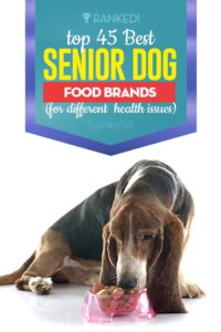 Top 45 Best Senior Dog Food Brands of This Year