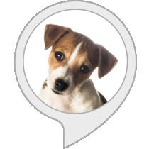 Fascinating Dog Facts Alexa Skill