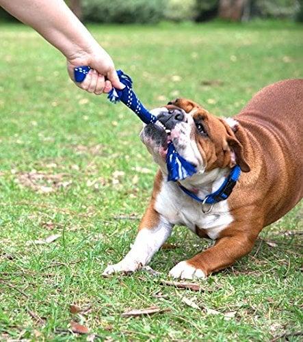 Rogz Dog Toys